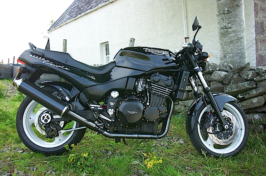 Triumph_Speed_Triple_900_T301_94-96_