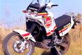 CAGIVA ELEFANT 900 - (1990/1996) - Italia